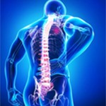 Occupational-Spine-Injurie