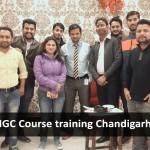 Chandigarh - Jan 2018
