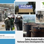 Safety Analysis Audit at National Dairy Development Board - Ajmer